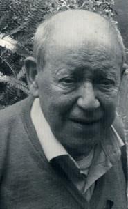 Gaetano Arfe